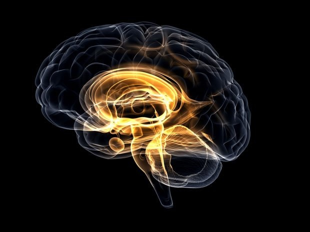 #brain imagerie médicale