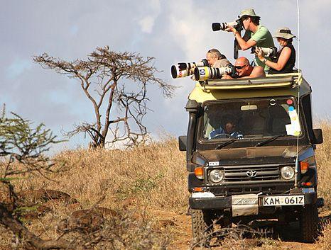 going on a safari