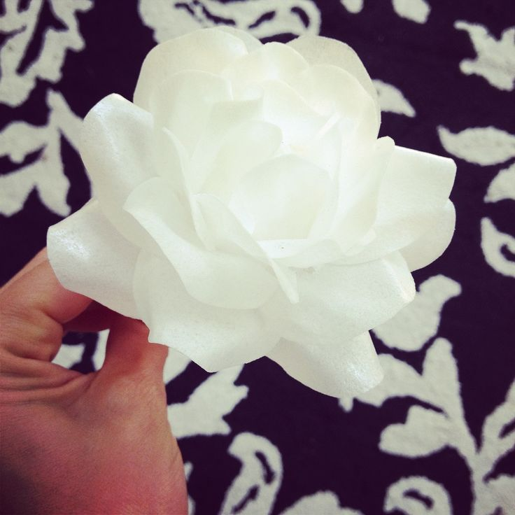 Wafer paper ruffles free video Tutorial! Plus other wafer paper designs...