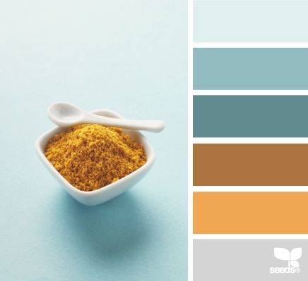Spiced palette:  some lovely blue-grays, a spicy but muted orange and reddish-tan.  Have used these combinations before.