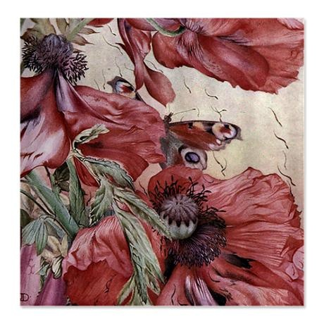 Image Result For Shower Curtain Ideas