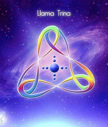 23 Llama Trina