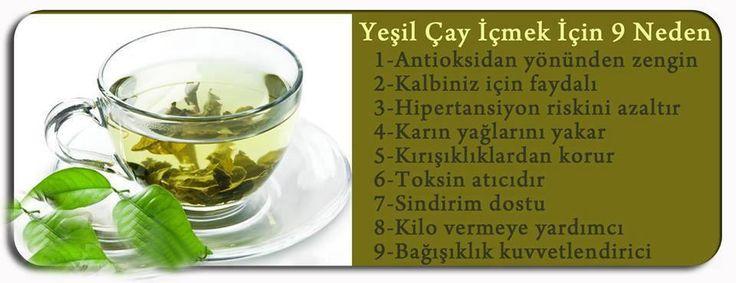 grey Yeşil Çayın Faydaları