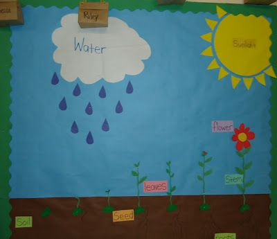 Spring bulletin boards...