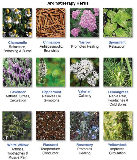 aromatherapy herbs.... this may help alot of you ? I love it and there is so much more but this is a start ! :)