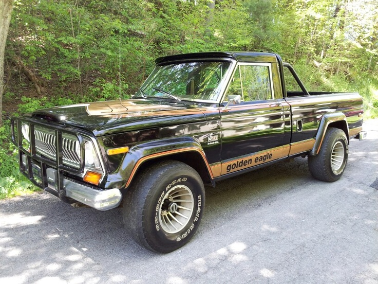my dads 1978 j10 golden eagle package purchased march 79