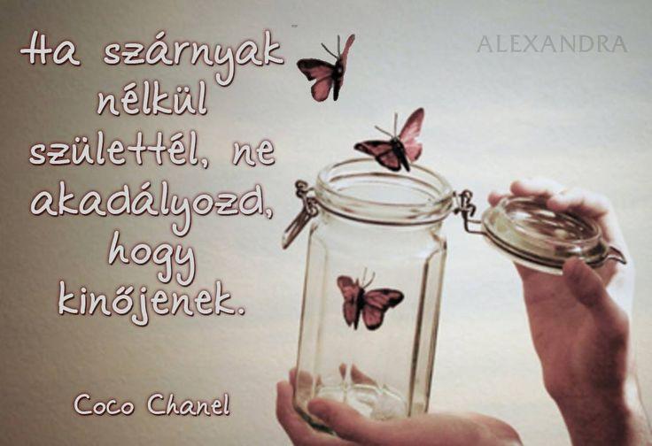 Coco Chanel idézete a szárnyalásról.