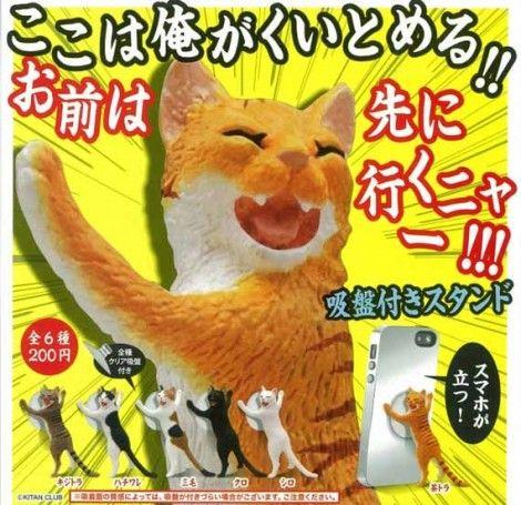 stand iphone gatto