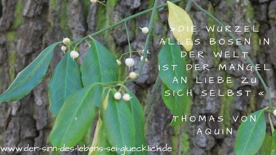 Zitate: #Zitat #Selbstliebe #Blog #Liebe