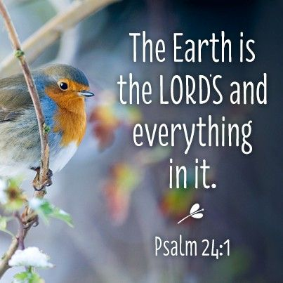 Psalm 24:1 ~ The earth is the Lord's and everything in it...