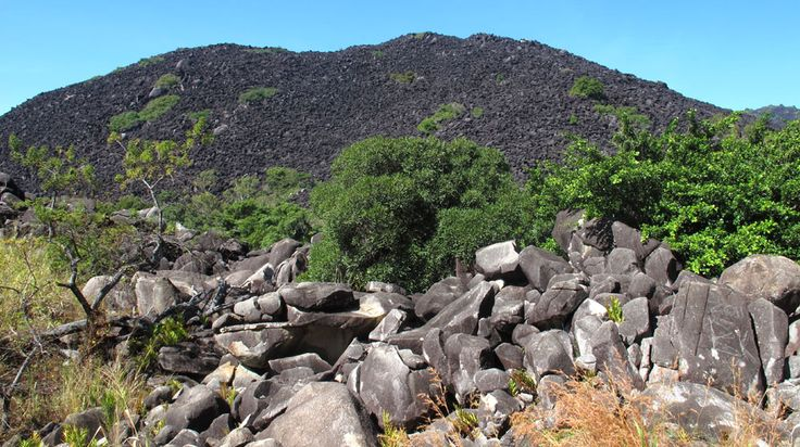 Black Mountain Cooktown | Black Mountain (Kalkajaka) National Park is a 781 hectare protected ...