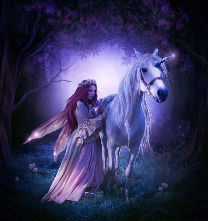 fairy and a unicorn