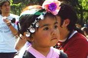 Indigenous Peoples: Chile must stop using anti-terrorism law against Mapuche indigenous group
