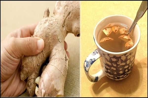 The regular consumption of ginger boosts the immune system in winter, and in case of chronic exhaustion and fatigue. Ginger is recommended as a preventive tool against colds, inflammation of the airways and the digestive system, and its anti- inflammatory...