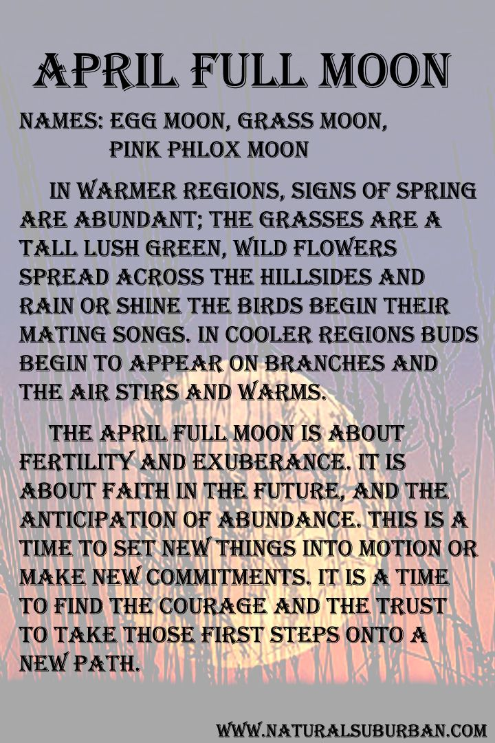 Moon:  #Full #Moon ~ April.