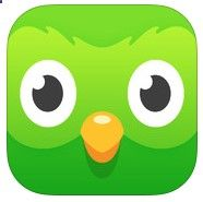 Duolingo (Spanish, Italian, German, Portuguese French) - the best language app on the market!