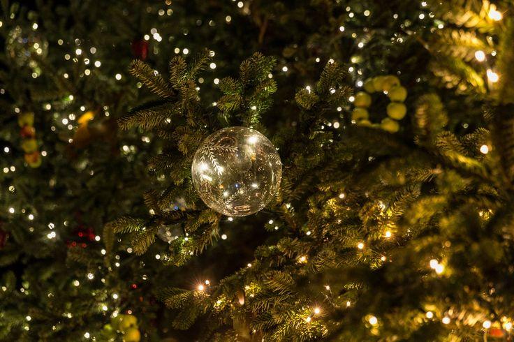 La magie du sapin de Noël - Styl'List Images