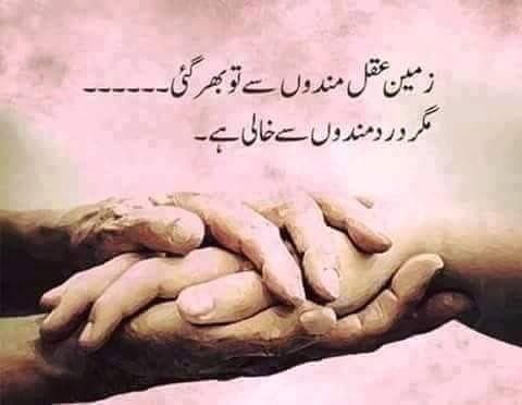 penpal meaning in urdu