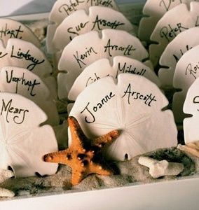 Sand dollar place cards - great idea for your Outer Banks Beach Wedding!