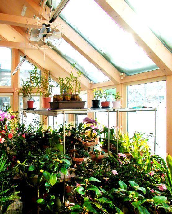 Hermoso jardin con diferentes tipos de plantas y flores #jardinesyflores