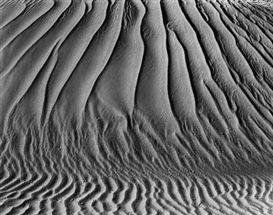 Edward Weston, Dunes - Oceano