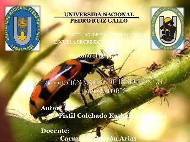 UNIVERSIDA NACIONAL  PEDRO RUIZ GALLO  FACULTAD DE CIENCIAS BIOLÓGICAS  ESCUELA PROFESIONAL DE BIOLOGÍA  Biocontrol de plagas  ...