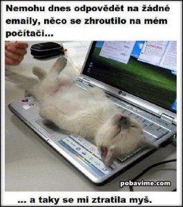 Nemohu dnes odpovědět na žádné emaily