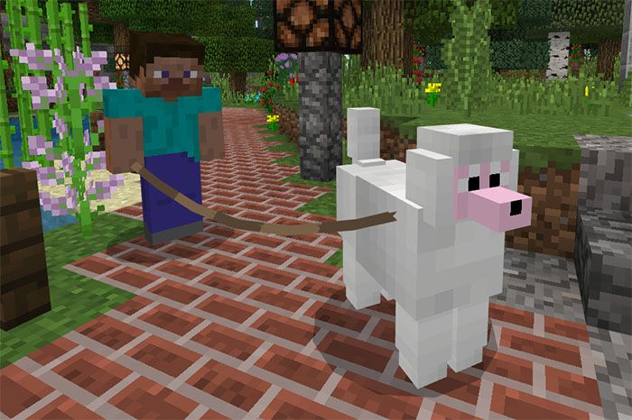 More Dogs Add On Minecraft Dogs Dogs Popular Dog Breeds