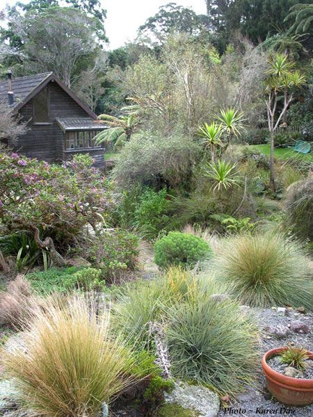 Grasses and mixed plantings