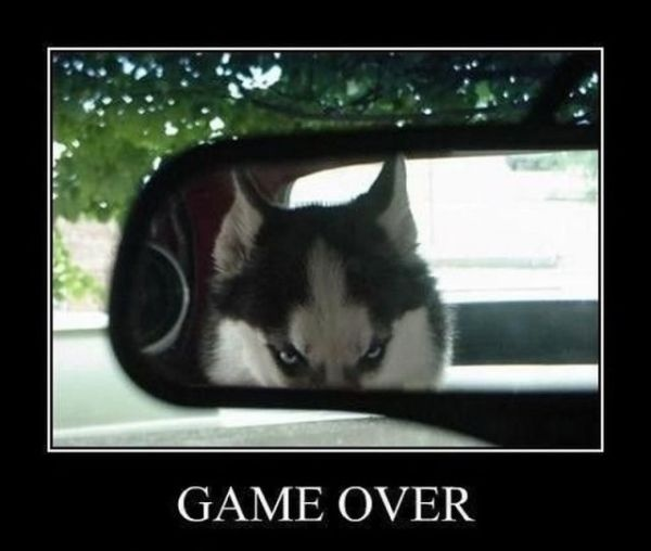 Game over......