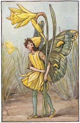 Illustration for the Daffodil Fairy from Flower Fairies of the Spring. A girl fairy stands holding  two daffodils, one in flower and one in bud.  										   																										Author / Illustrator  								Cicely Mary Barker