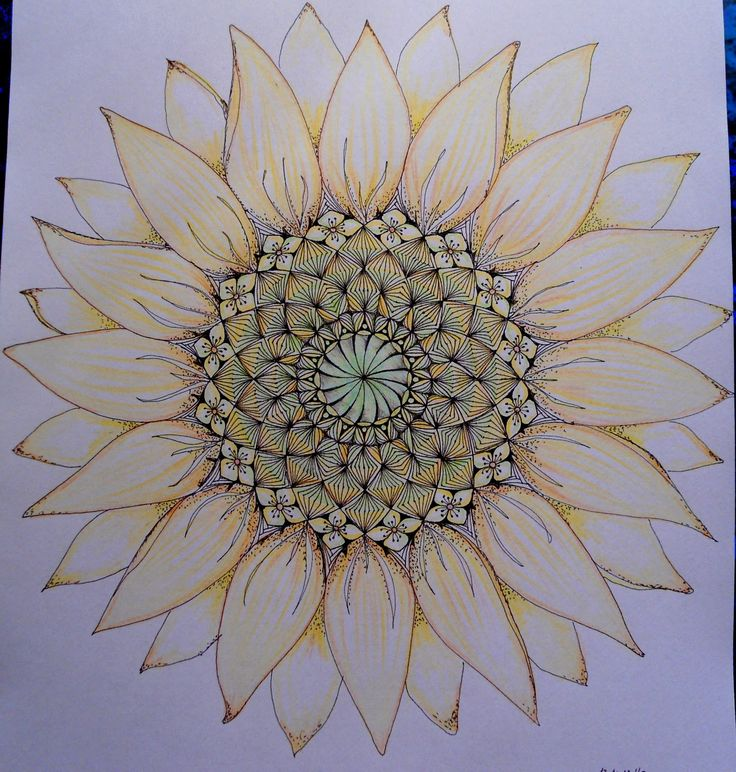 Love the idea of its center being a mandala and then having normal petals