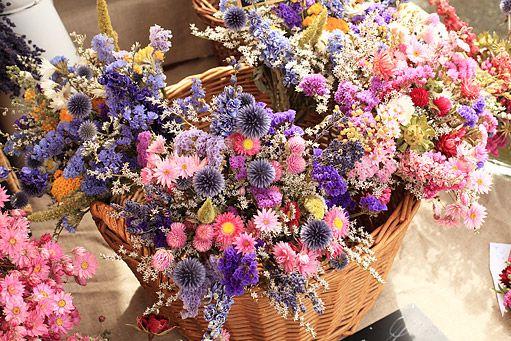 Květiny vhodné k sušení si uchovávají tvar i barvu