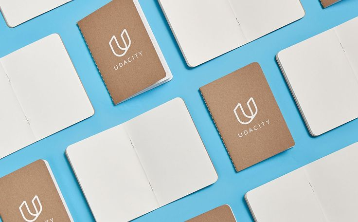 A case study of the partnership between Udacity and Focus Lab.