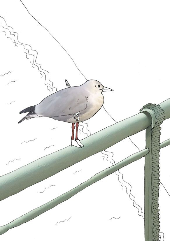 """seagull over Wienfluss"", Stanislaus Medan, 2014 #animals #park #grafic #children #drawing #collage #fotocollage #seagull #river #bridge"