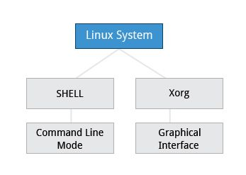 The X Window System | Chpt 6, Section 1: Command Line Mode Options | LFS101x.2 Courseware | edX