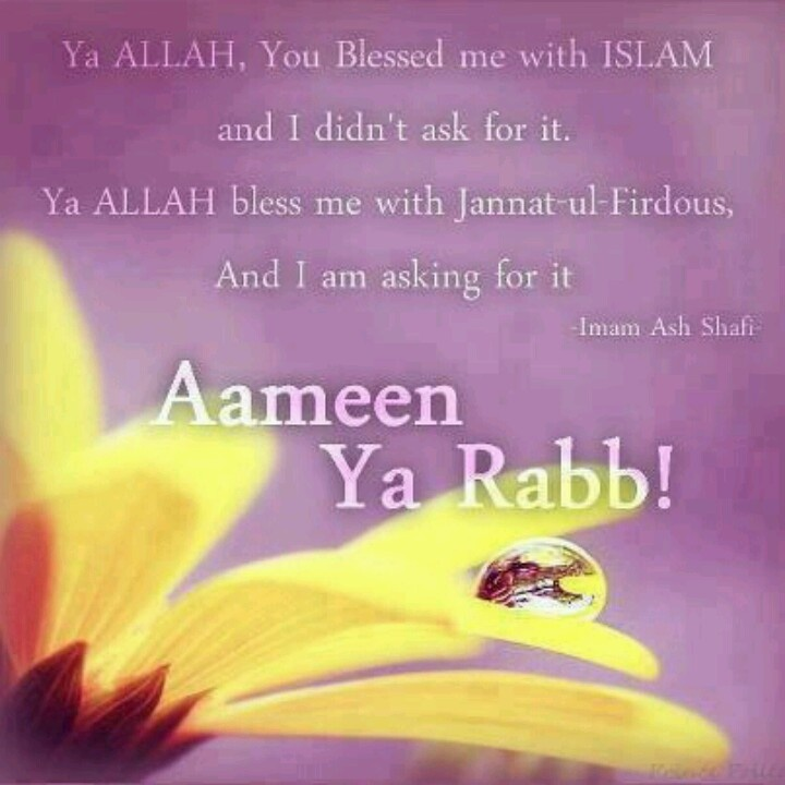 Ya Allah, you blessed with Islaam, and I didn't ask for. Ya Allah, bless me with Jannatul Firdaws, And I am asking for it. { Imam Ash Shafi (Rahimahullah) }