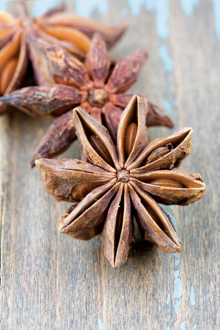 Spice Hunting: Star Anise. Add about 4 to 5 Star Anise to broiling water when cooking oatmeal!  Yummy!