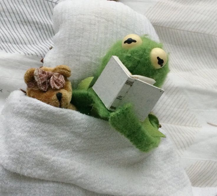Kermit reading to his teddy bear