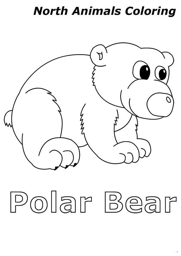 Arctic Animals Cute Baby Polar Bear In Arctic Animals Coloring Page