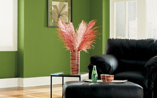 House ColorI Interior Ideas ~ http://lovelybuilding.com/unique-and-smart-house-color-interior-ideas/