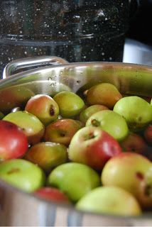 Canning Applesauce - How to Can Applesauce