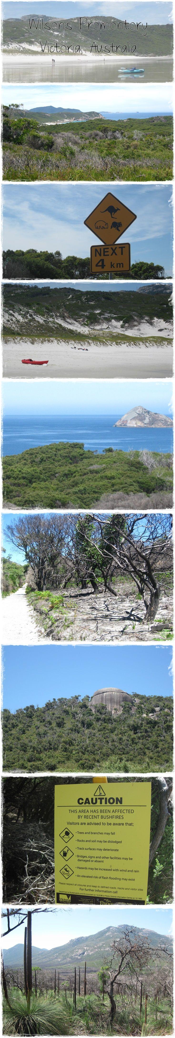 Wilsons Promontory, Victoria, Australie Roadtrip en famille  www.lagrandederoute.com