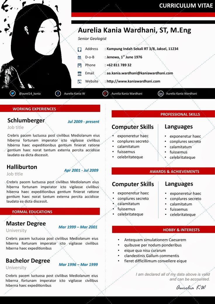 Contoh Application Letter And Curriculum Vitae How Write