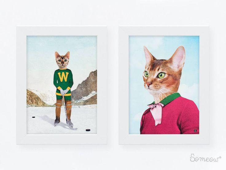 Duo d'affiches d'un chat de Bengale joueur de hockey et d'une chatte abyssin aux yeux verts