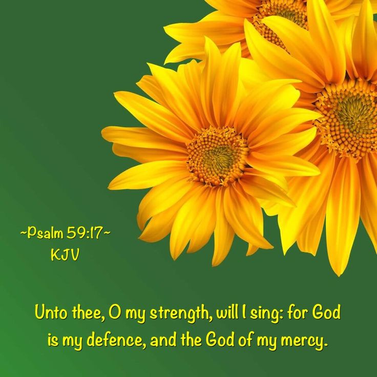 Psalm 59 16 17 But I Will Sing Of Your Strength Yes I: 1000+ Images About Flowers + Bible Verses On Pinterest