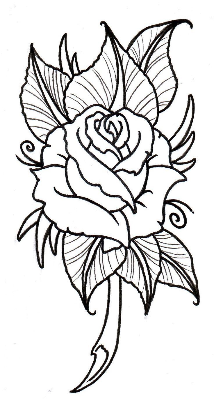 Free Printable Tattoo Designs: 24 Best Rose Tattoo Designs Printable Images On Pinterest