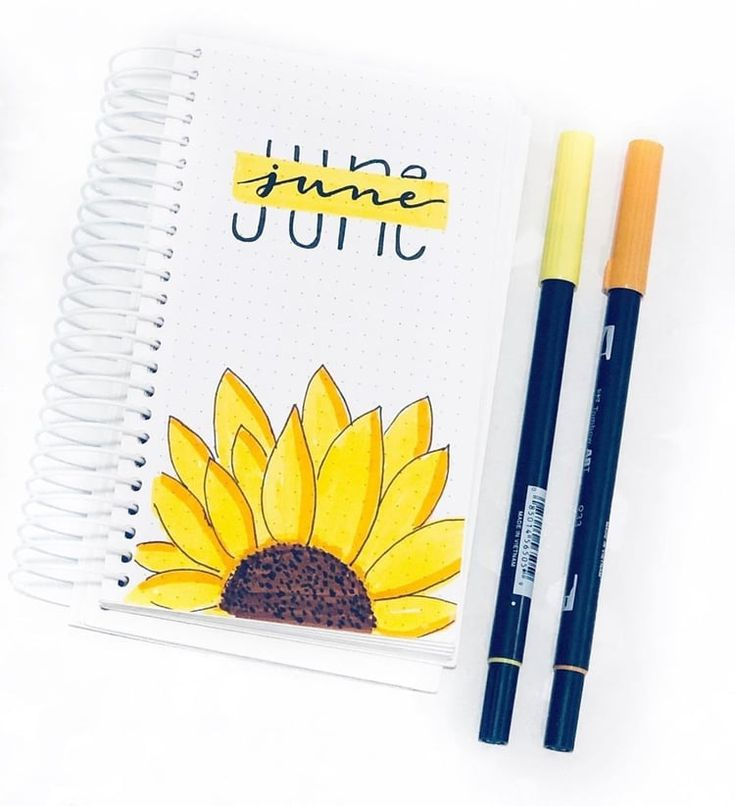 23 Stunning Sunflower Themed Bullet Journal Layout and Spread Ideas