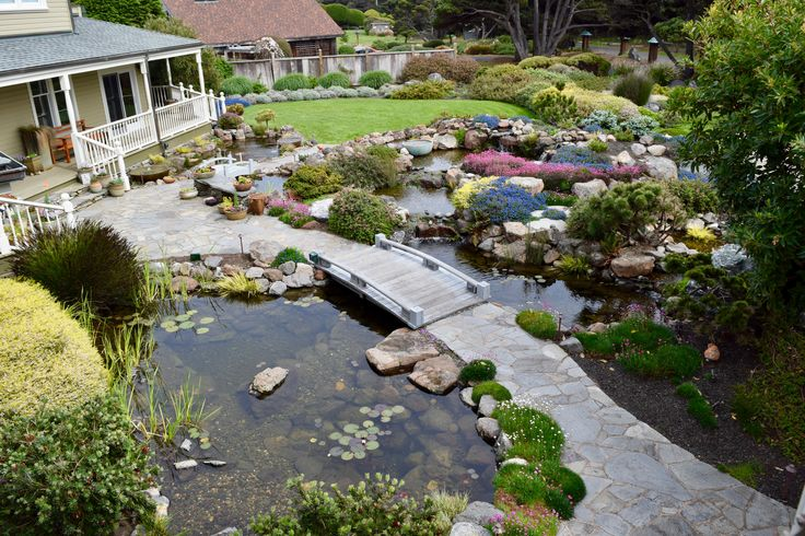 11 best pond ideas images on pinterest pond ideas for Small pond base