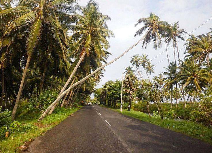 Road near Mandaikkadu,Kanyakumari